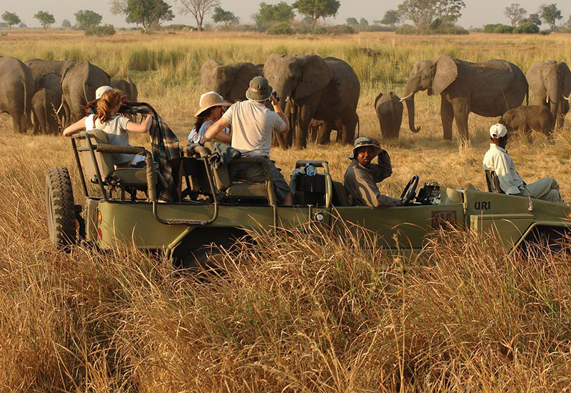 Sasana Tours and Safaris - Safari Tours - Game Drive Safari - Zimbabwe Tours and Safaris